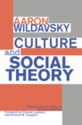 Culture and Social Theory - eBook