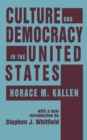 Culture and Democracy in the United States - eBook
