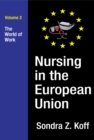 Nursing in the European Union : The World of Work - eBook