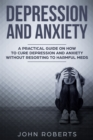 Depression and Anxiety : A Practical Guide on How to Cure Depression and Anxiety Without Resorting to Harmful Meds - eBook