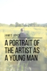 A Portrait of the Artist as a Young Man - eBook