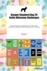 Basque Shepherd Dog 20 Selfie Milestone Challenges Basque Shepherd Dog Milestones for Memorable Moments, Socialization, Indoor & Outdoor Fun, Training Volume 3 - Book
