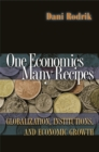 One Economics, Many Recipes : Globalization, Institutions, and Economic Growth - eBook