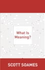 What Is Meaning? - eBook