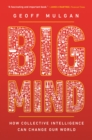 Big Mind : How Collective Intelligence Can Change Our World - eBook