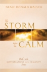 The Storm Before the Calm - eBook