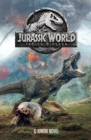 Jurassic World: Fallen Kingdom Junior Novel - Book