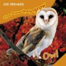 Owl - eBook