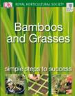 Bamboos and Grasses : Simple steps to success - eBook