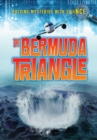 Bermuda Triangle - Book