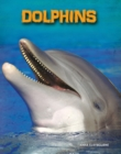 Dolphins - Book