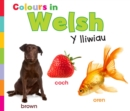 Colours in Welsh - eBook
