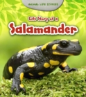 Life Story of a Salamander - eBook