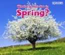What Can You See In Spring? - Book