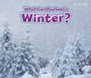 What Can You See In Winter? - Book