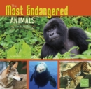 The Most Endangered Animals in the World - eBook
