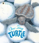One Tiny Turtle - Book