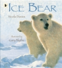 Ice Bear - Book