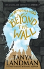 Beyond the Wall - Book