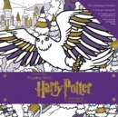 Harry Potter: Winter at Hogwarts: A Magical Colouring Set - Book