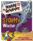 Stormy Weather - Book
