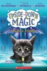 UPSIDE DOWN MAGIC #2: Sticks and Stones - Book