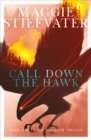 Call Down the Hawk - Book