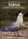 Terns of Europe and North America - eBook