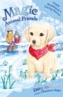 Magic Animal Friends: Poppy Muddlepup's Daring Rescue : Special 1 - Book