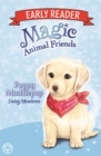 Magic Animal Friends Early Reader: Poppy Muddlepup : Book 5 - Book