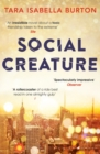 Social Creature : `Sure to be on every smart beach lounger this summer' (The i paper) - Book