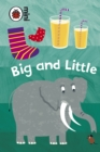Early Learning: Big and Little - Book