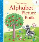Alphabet Picture Book - Book