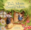 Town Mouse and Country Mouse - Book