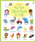 My First Word Book in Irish - Book