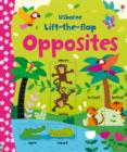 Lift-the-flap Opposites - Book