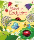 Wind-Up Ladybird - Book