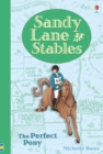 Sandy Lane Stables - The Perfect Pony - Book