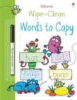 Wipe-Clean Words to Copy - Book