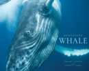Beautiful Whale - Book