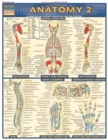 Anatomy 2 - Reference Guide (8.5 x 11) : a QuickStudy Reference Tool - eBook