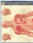 Trigger Points - eBook