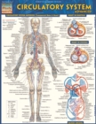 Circulatory System Advanced - eBook