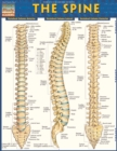 The Spine - eBook