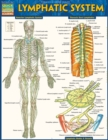 Lymphatic System - eBook