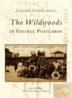 The Wildwoods in Vintage Postcards - eBook