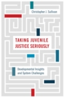 Taking Juvenile Justice Seriously : Developmental Insights and System Challenges - eBook