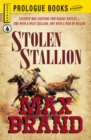 Stolen Stallion - eBook