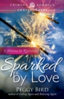 Sparked by Love : A Holiday for Romance - eBook