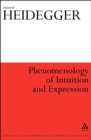 Phenomenology of Intuition and Expression - eBook